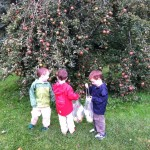 Apple picking on 4th bday